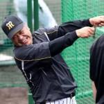 阪神タイガース金本監督が橋渡し…2016年まで掛布がユニホームを着なかった深い理由