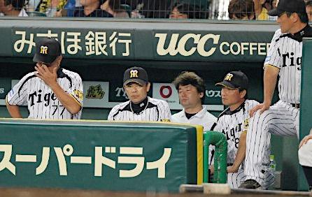 阪神タイガース コーチ 2016 赤星