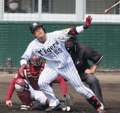 2017 阪神 新外国人 調査 投手 野手 キャンベル 補強