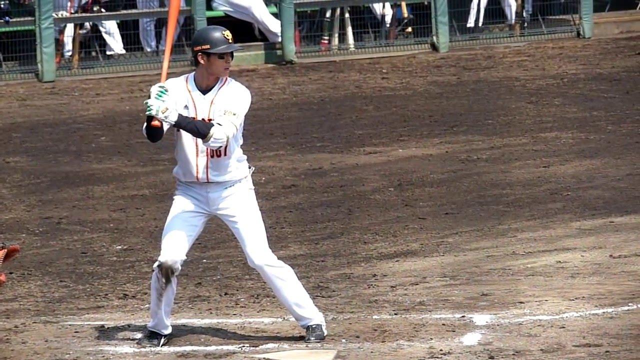 高橋洸 戦力外後 進路 社会人野球 独立リーグ 給料 どれぐらい?